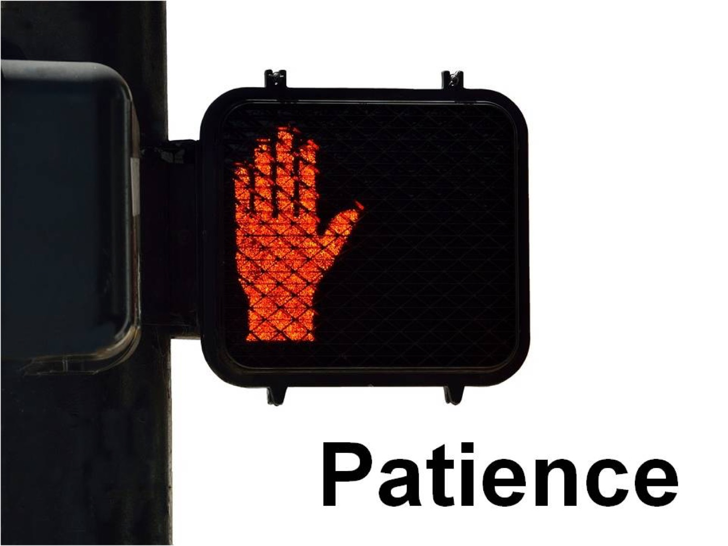 Picture of a pedestrian crossing caution light with the word 'Patience' underneath it.